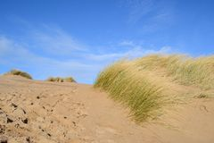 The sandy beach dunes. Royalty Free Stock Photography