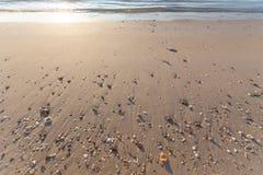 Sandy Beach e escudos agradáveis imagem de stock