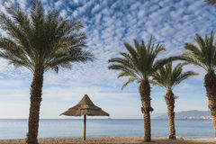 Sandy beach of Eilat - famous resort and recreation city in Israel Royalty Free Stock Photo