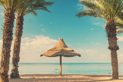 Sandy beach in Eilat, Israel Stock Images