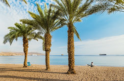 Sandy beach of Eilat after storm, Israel. Eilat is a famous resort and recreation city in Israel Royalty Free Stock Photo
