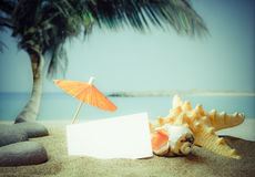 Sandy Beach em uma costa tropical Imagem de Stock