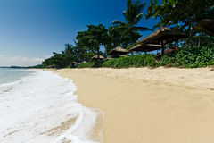 Sandy beach. Exotic beach with vegetation and white foamy waves in Bali, Indonesia Royalty Free Stock Photo