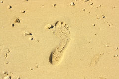 Sandy Beach Footprint Stock Image
