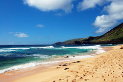 Sandy Beach Honolulu Hawaii Stock Photos