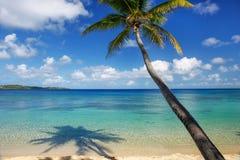 Sandy beach and leaning palm tree on Drawaqa Island, Yasawa Islands, Fiji stock photo