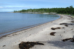 Sandy beach in the gulf of the White sea Stock Photos