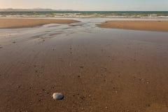 Sandy beach at low tide in Coromandel Peninsula Stock Photography