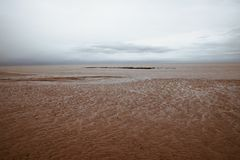Sandy beach in low tide. Sandy beach during low tide and a little cloud in a grey day Stock Photo