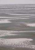 Sandy Beach masivo, Tidepools y figuras distantes Fotos de archivo libres de regalías