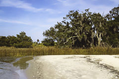 Sandy beach meets tidal marsh on Jekyll Island, Ge Stock Photos