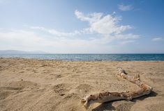 Sandy beach and ocean Stock Images