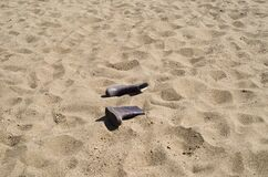 Sandy beach with a pair of rubber boots