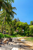 Sandy beach with palm trees near the hotel Stock Images