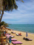 Sandy beach with palm trees and pink loungers. Koh Samui Stock Photos