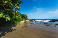 Sandy beach with palm trees. Rocks and blue sky. Yellow sand, tropical island on vacation. Sri Lanka Stock Photo