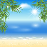 Sandy beach with palm trees Royalty Free Stock Photography