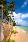 Sandy beach with palm trees and wall Royalty Free Stock Photo