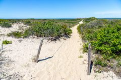 Sandy beach path to the ocean stock photography