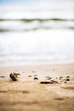 Sandy Beach, Pebbles and Sea on the Background Stock Photos