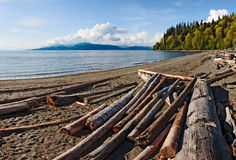 Sandy beach on Point Grey in Vancouver. Driftwood on a sandy beach on Point Grey in Vancouver. Bowen Island is visible in the distance Royalty Free Stock Photos