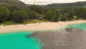 Sandy Beach portuário com palmeiras, Espiritu Santo Island de Orly, Vanuatu video estoque