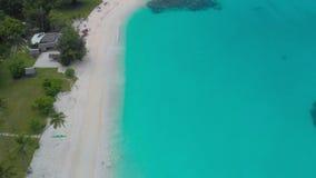 Sandy Beach portuário com palmeiras, Espiritu Santo Island de Orly, Vanuatu filme