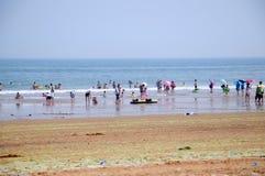 Sandy beach Royalty Free Stock Image