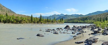 Sandy beach on the river Katun, Altai Mountains Siberia, Russia Royalty Free Stock Photography