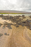 Sandy Beach and Rocks in the Galapagos Stock Photography