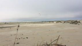 Sandy beach on Romo Island in Denmark. stock video