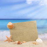 Sandy beach scene in summer with copyspace Royalty Free Stock Images