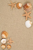 Sandy beach scene in summer vacation with sand and copyspace Stock Photo