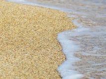 Sandy beach and the sea on a sunny day. The sandy beach and the sea on a sunny day Stock Photos