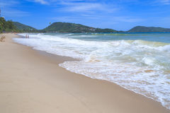 Sandy Beach and Sea Wave Foam on Coast in Phuket , Thailand Stock Image