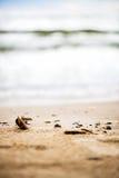 Sandy Beach, seixos e mar no fundo Fotos de Stock