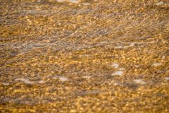 Sandy beach with shallow water Stock Photo
