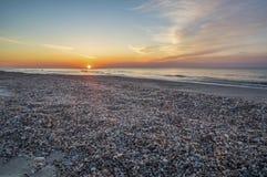 Sandy beach with shells, dawn Stock Photos