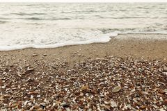 Sandy beach with shells, stones and waves. Seashore close up. Summer vacation and travel concept. Summer wallpaper royalty free stock image