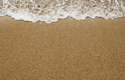 Sandy beach Stock Image