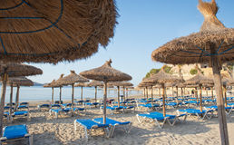 Sandy Beach With Straw Umbrellas och Sunbeds Royaltyfri Fotografi