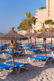 Sandy Beach With Straw Umbrellas and Sunbeds. Beautiful Sandy Beach with Straw Umbrellas at Sunrise in Paguera, Majorca ( Balearic Islands - Spain stock photo