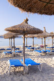 Sandy Beach With Straw Umbrellas and Sunbeds. Beautiful Sandy Beach with Straw Umbrellas at Sunrise in Paguera, Majorca ( Balearic Islands - Spain royalty free stock photos