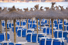Sandy Beach With Straw Umbrellas and Sunbeds. Beautiful Sandy Beach with Straw Umbrellas at Sunrise in Paguera, Majorca ( Balearic Islands - Spain stock photography