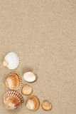 Sandy beach in summer vacation with sand, sea shells and copyspa Stock Image