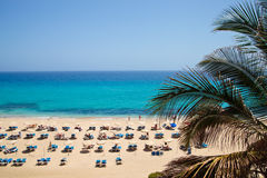 Sandy beach with sun loungers. Playa del matorral, Fuerteventura, Canary Islands, Spain royalty free stock photo