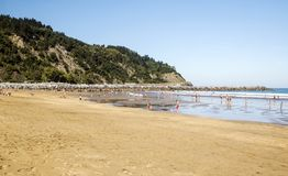 Sandy beach. On a sunny day stock image