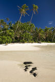Sandy beach, Survivor Cook Islands, Aitutaki, Stock Photography