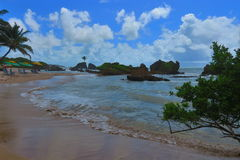 Sandy beach of Tambaba in the state of Paraiba Brazil Stock Photography