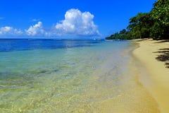 Sandy beach on Taveuni Island, Fiji Stock Photography